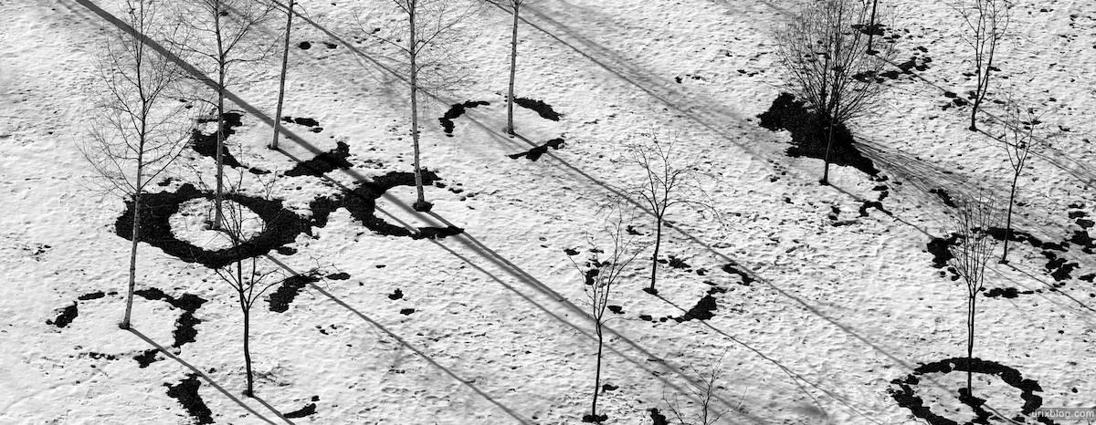 москва двор снег деревья