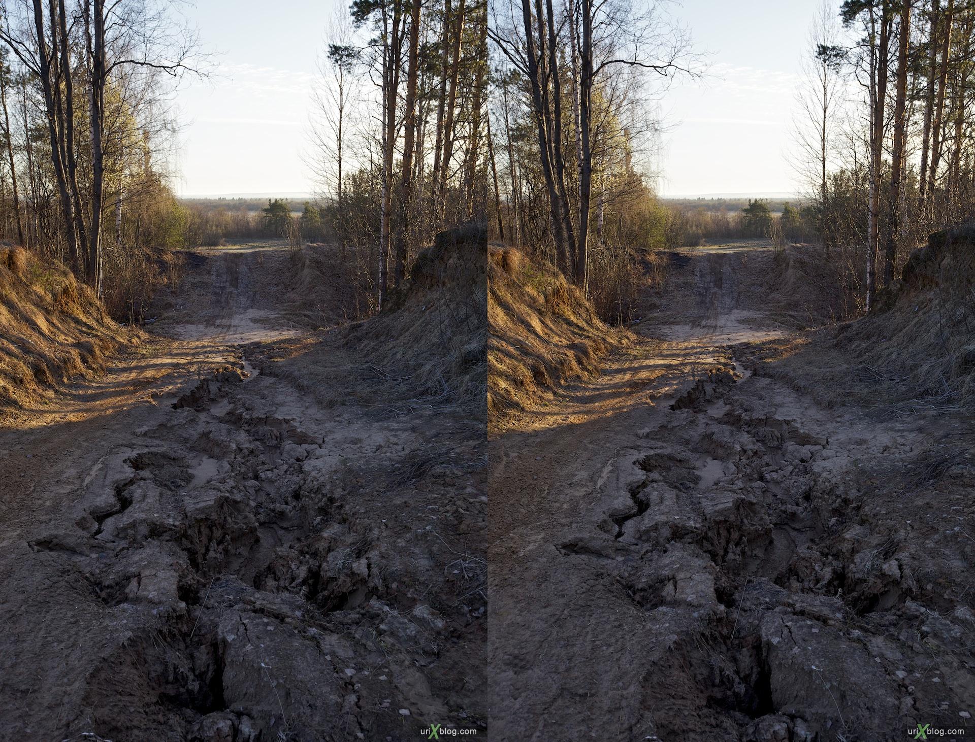 2010 3D, stereo, cross-eyed, стерео, стереопара около Вельска, Архангельская область лес поле