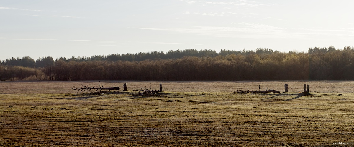 2010 около Вельска Архангельская область