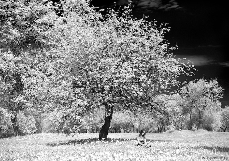 2010 Москва Moscow фотосессия с Дианой в Коломенском girl девушка B/W black and white чёрно белое
