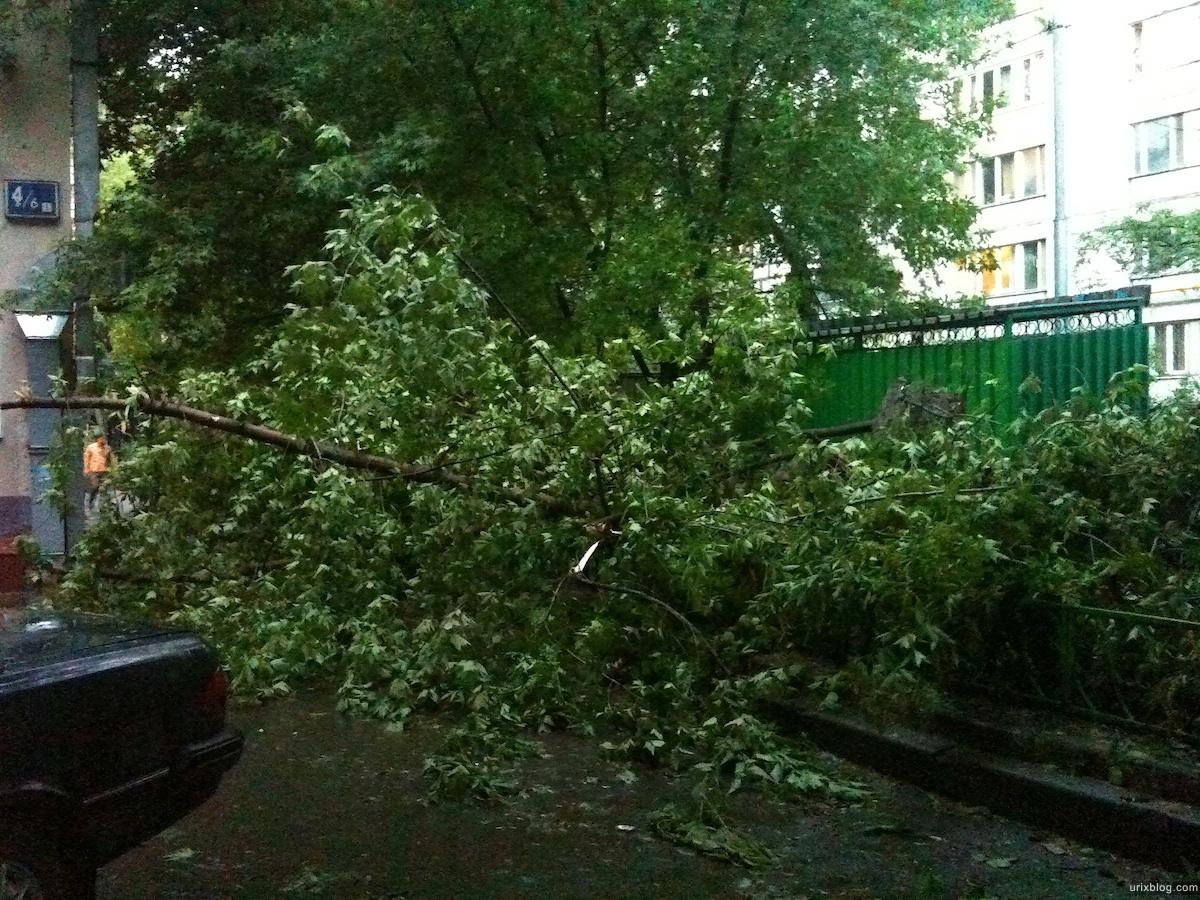 2010 Москва Moscow последствия урагана