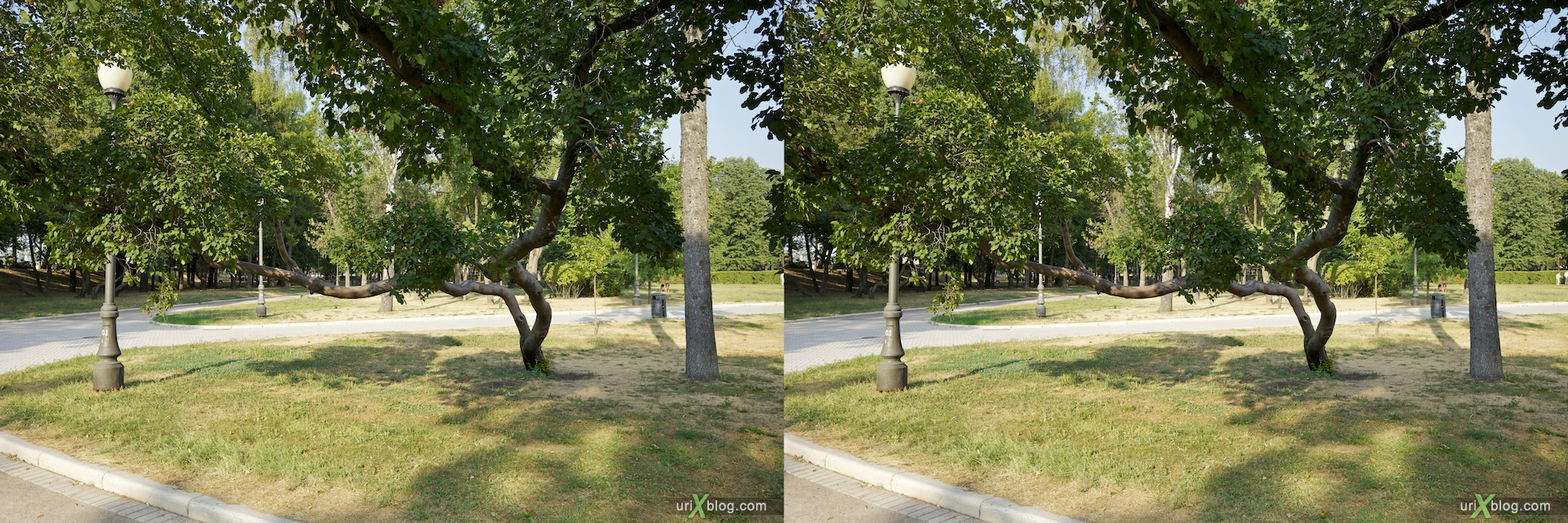 парк 3D, stereo, cross-eyed, стерео, стереопара Новодевичий монастырь Москва Novodevichiy monastyr Moscow