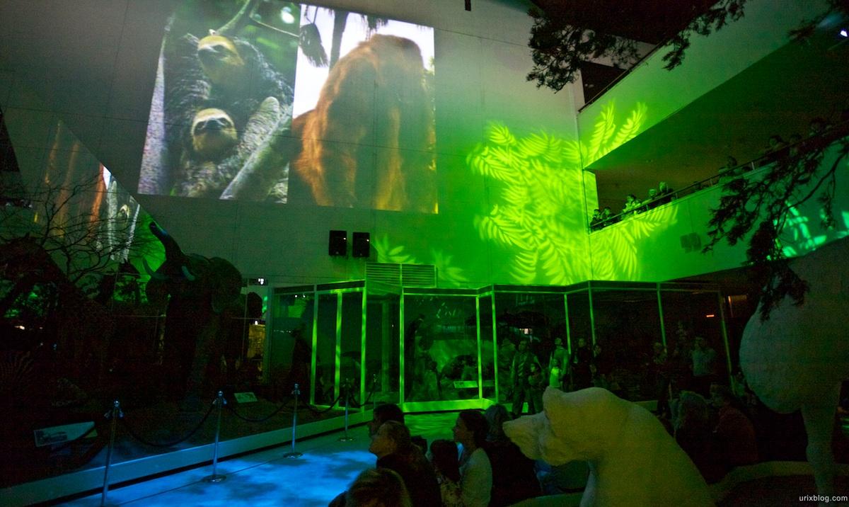 2010 Дарвиновский музей, Москва