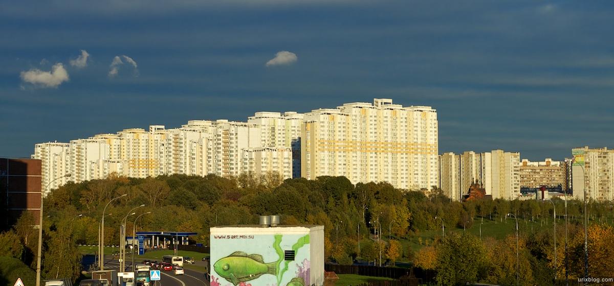 2010 ландшафтный парк в Митино Москва