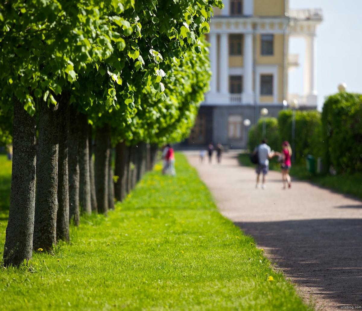 Архангельское, усадьба, Москва 2011