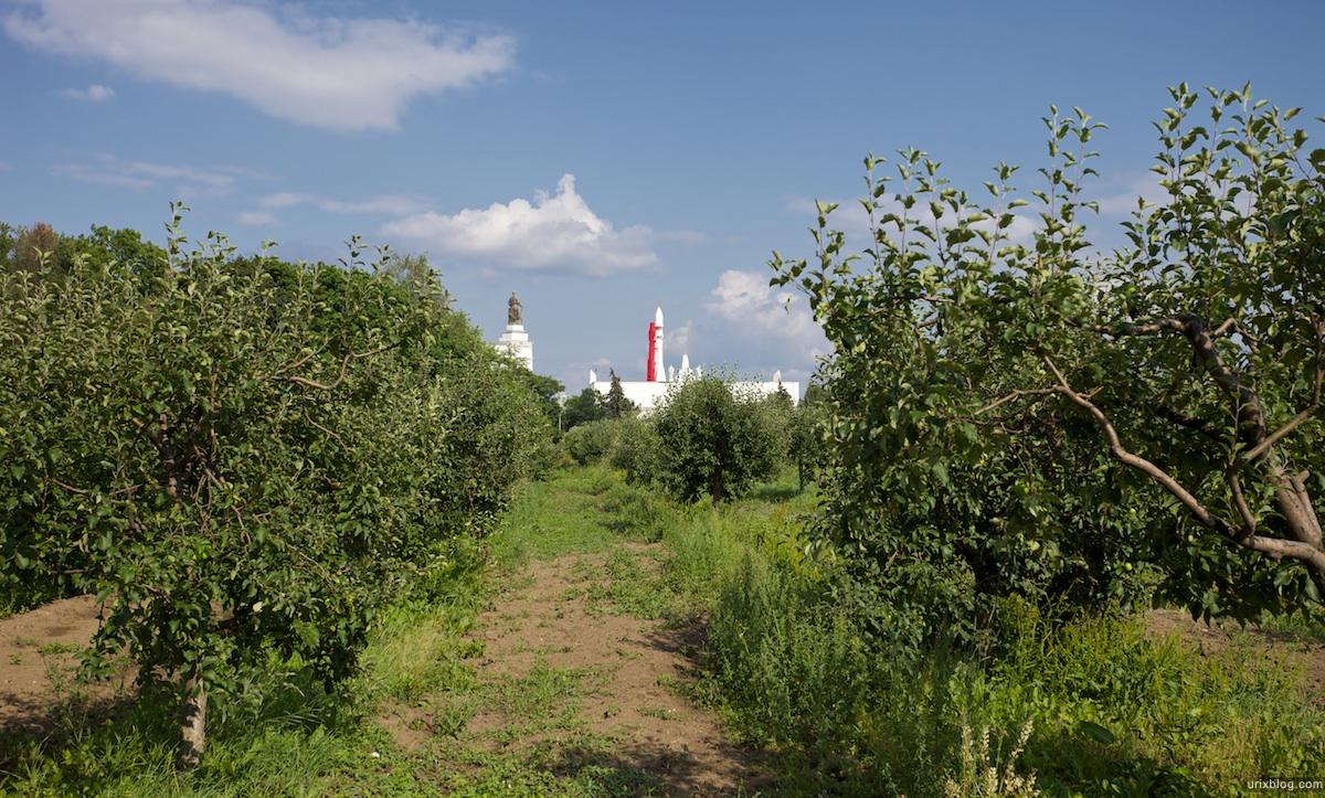 ВВЦ Москва 2011 деревья сад