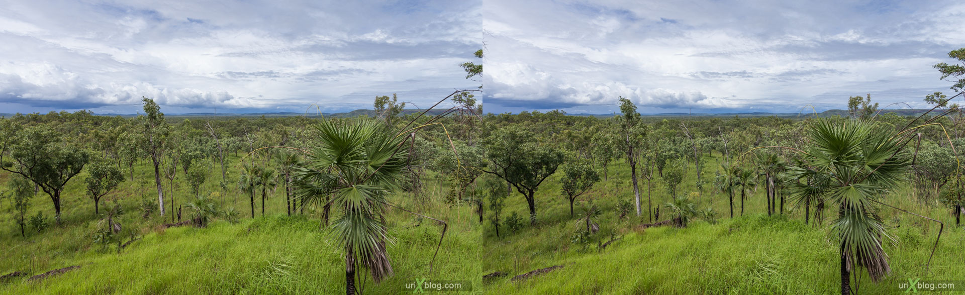 Kakadu National Park, Northern Territory, Australia, 3D, stereo pair, cross-eyed, crossview, cross view stereo pair, stereoscopic, 2011