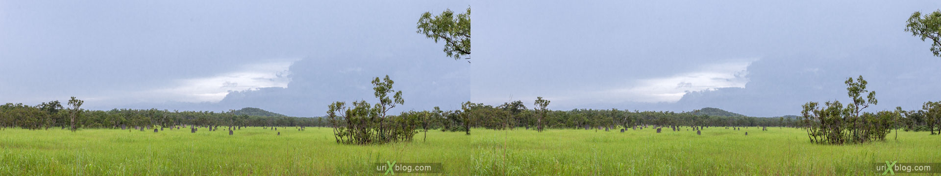 termite mound, Litchfield National Park, Northern Territory, Australia, 3D, stereo pair, cross-eyed, crossview, cross view stereo pair, stereoscopic, 2011
