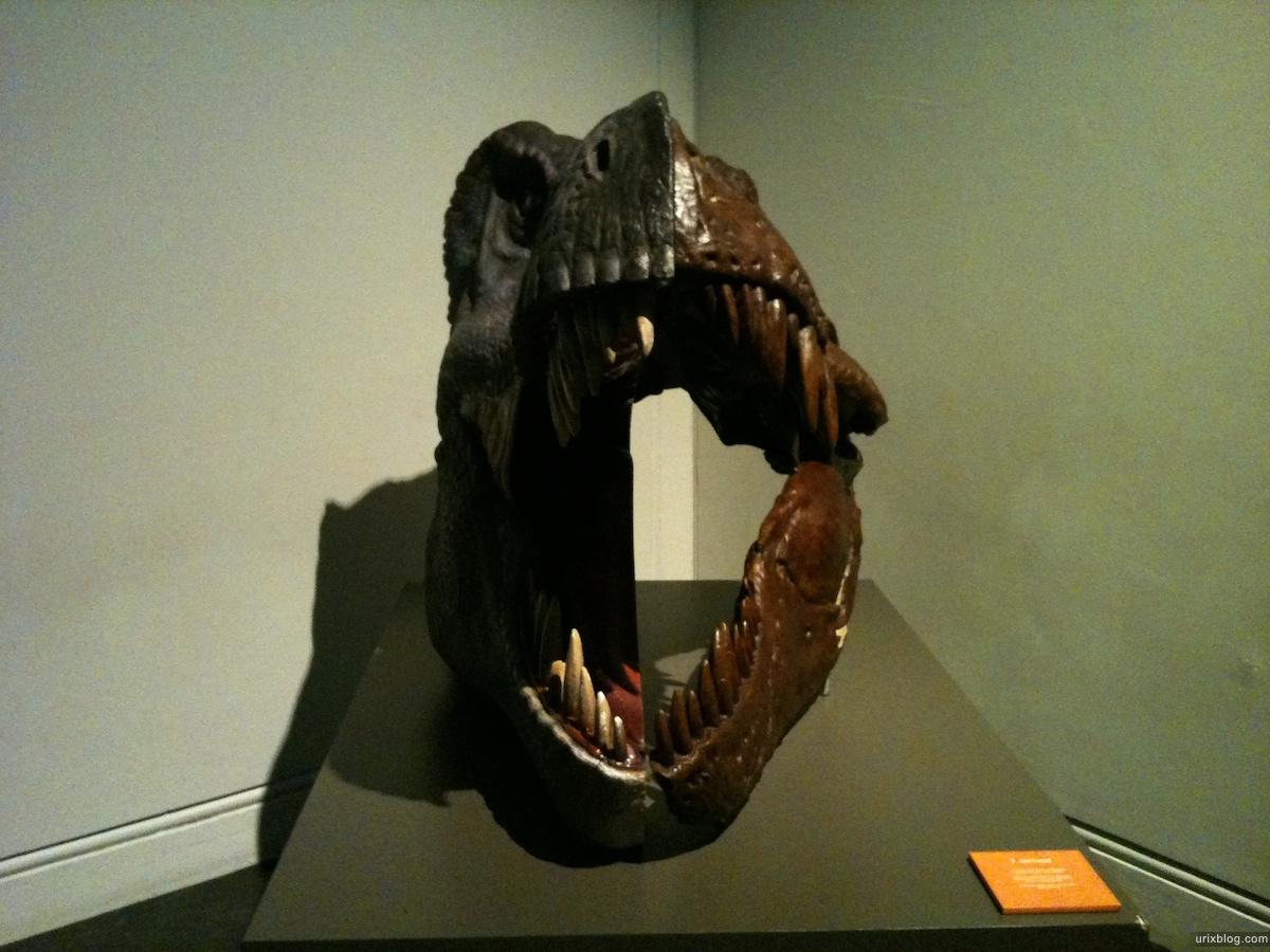2010 2011 Sydney Australian Museum