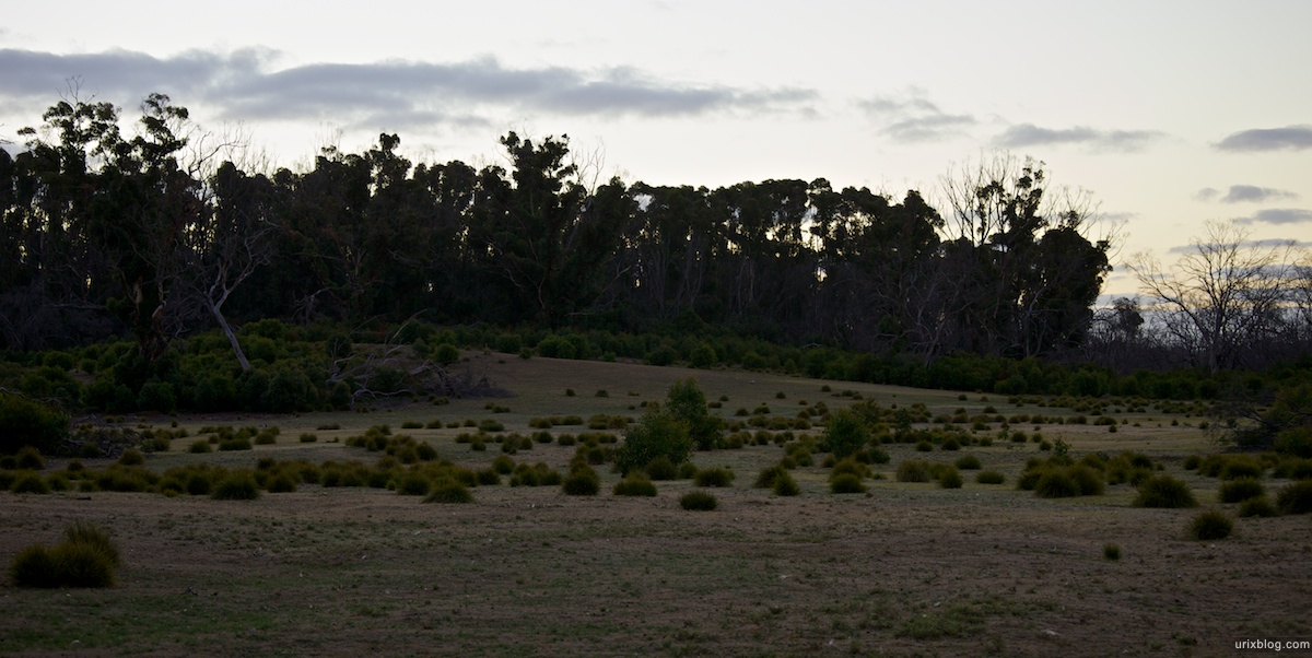 2011 2010 South Australia, Kangaroo Island, Остров Кенгуру, Южная Австралия, Flinders Chase