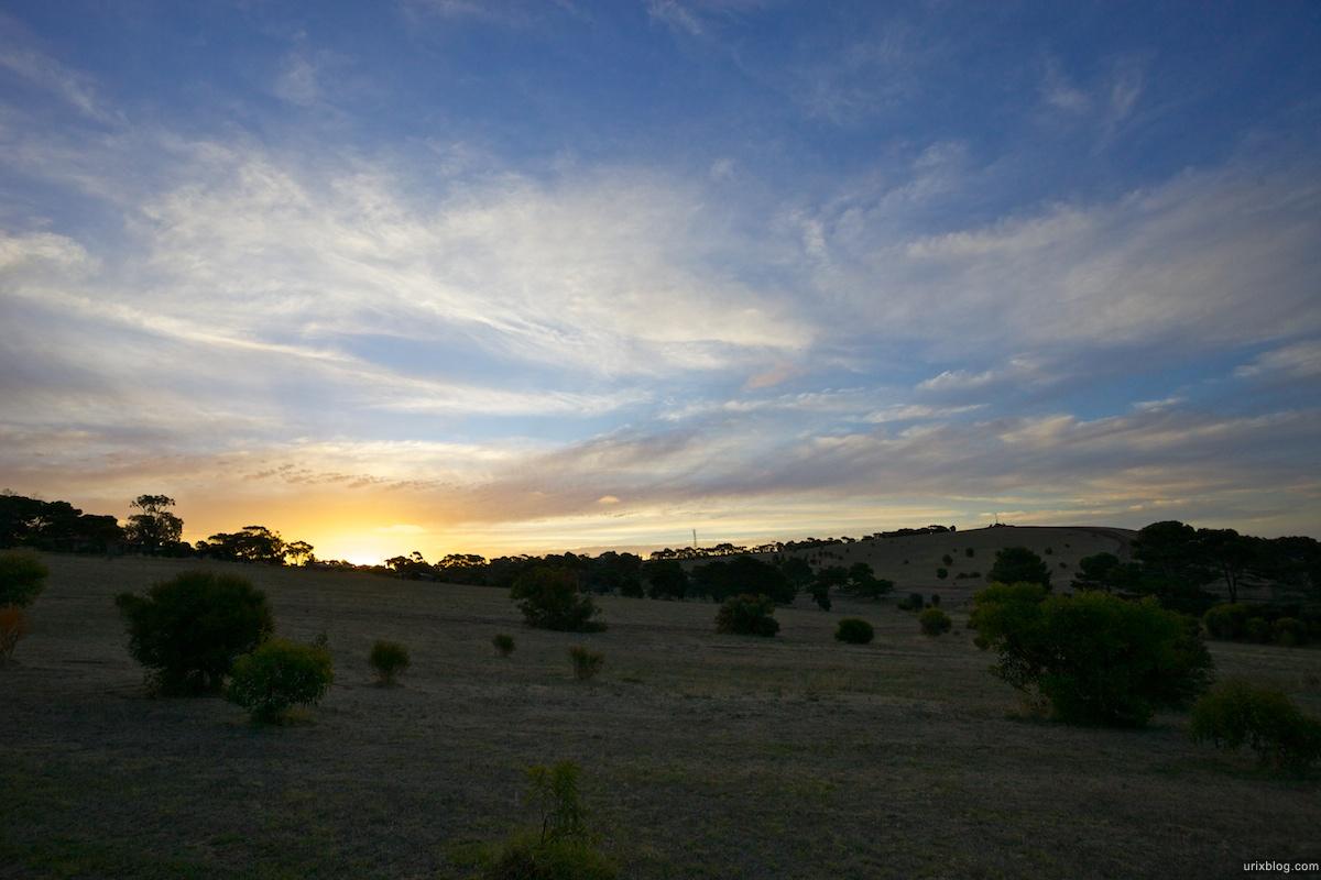 2011 South Australia, Kangaroo Island, Остров Кенгуру, Южная Австралия, Kingscote