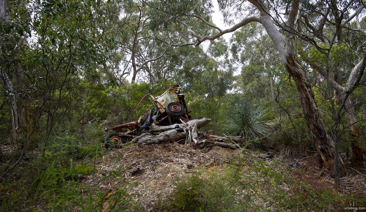2011 2010 South Australia, Kangaroo Island, Остров Кенгуру, Южная Австралия, Flinders Chase, forrest, лес