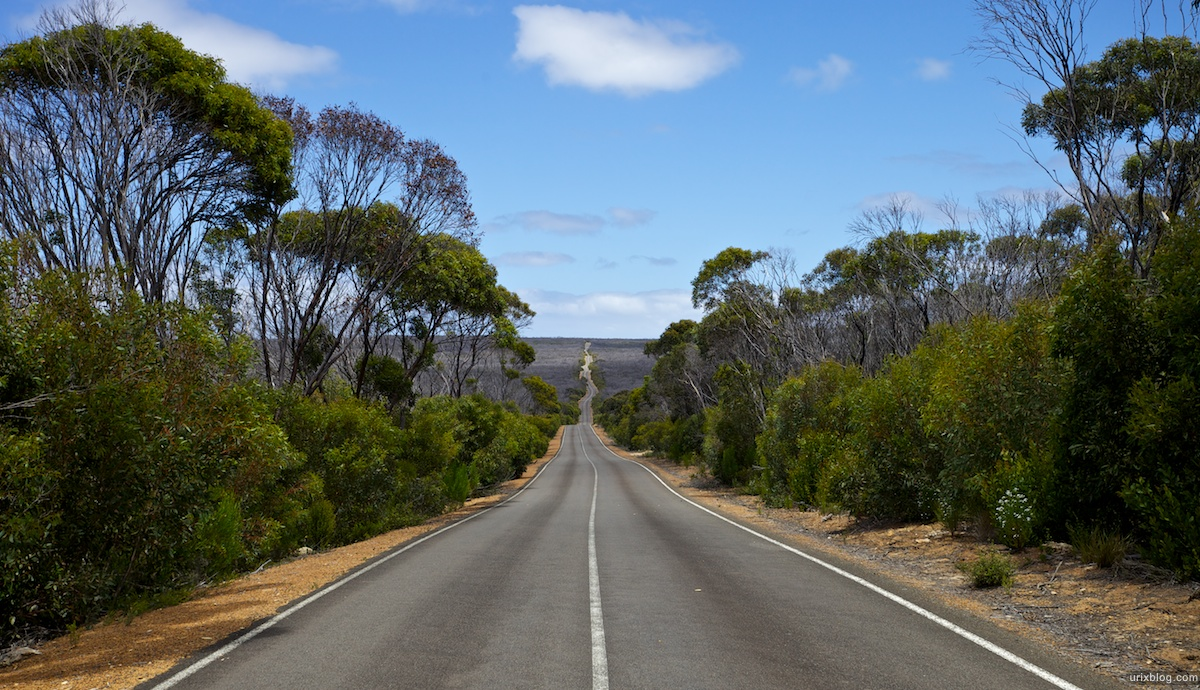 2011 2010 South Australia, Kangaroo Island, Остров Кенгуру, Южная Австралия, Flinders Chase, road, дорога
