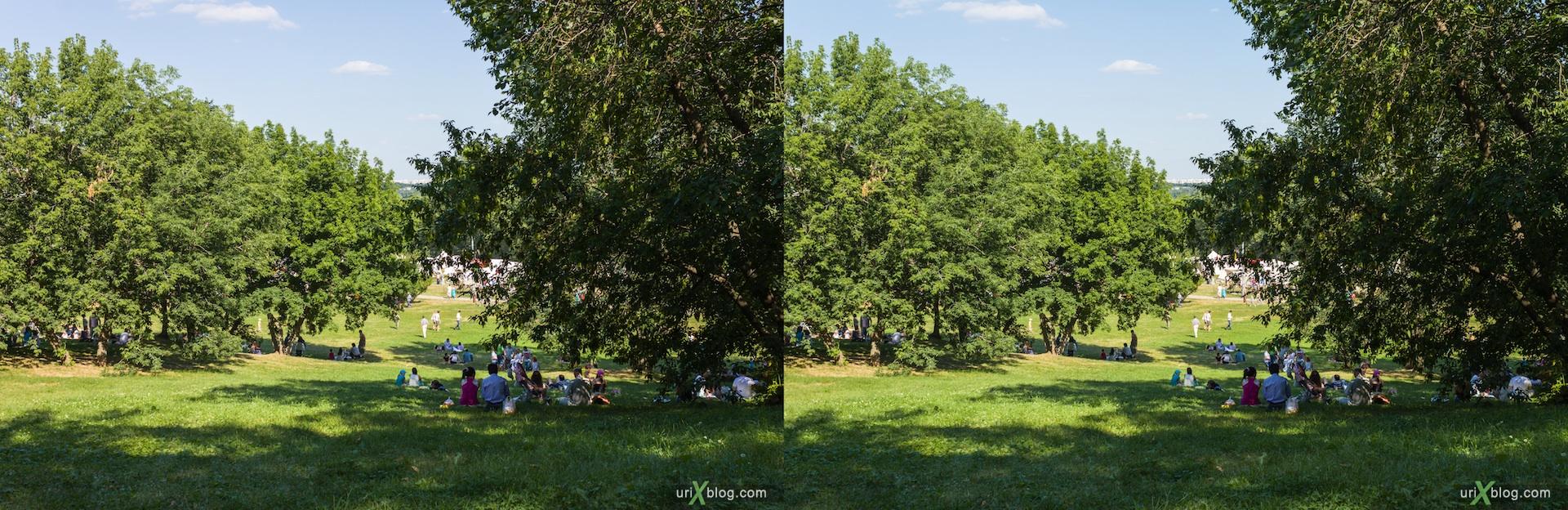 2012 Moscow Kolomenskoe 3D stereo stereo pair crossview park Москва Коломенское парк 3Д стерео перекрёстная стереопара поляна деревья