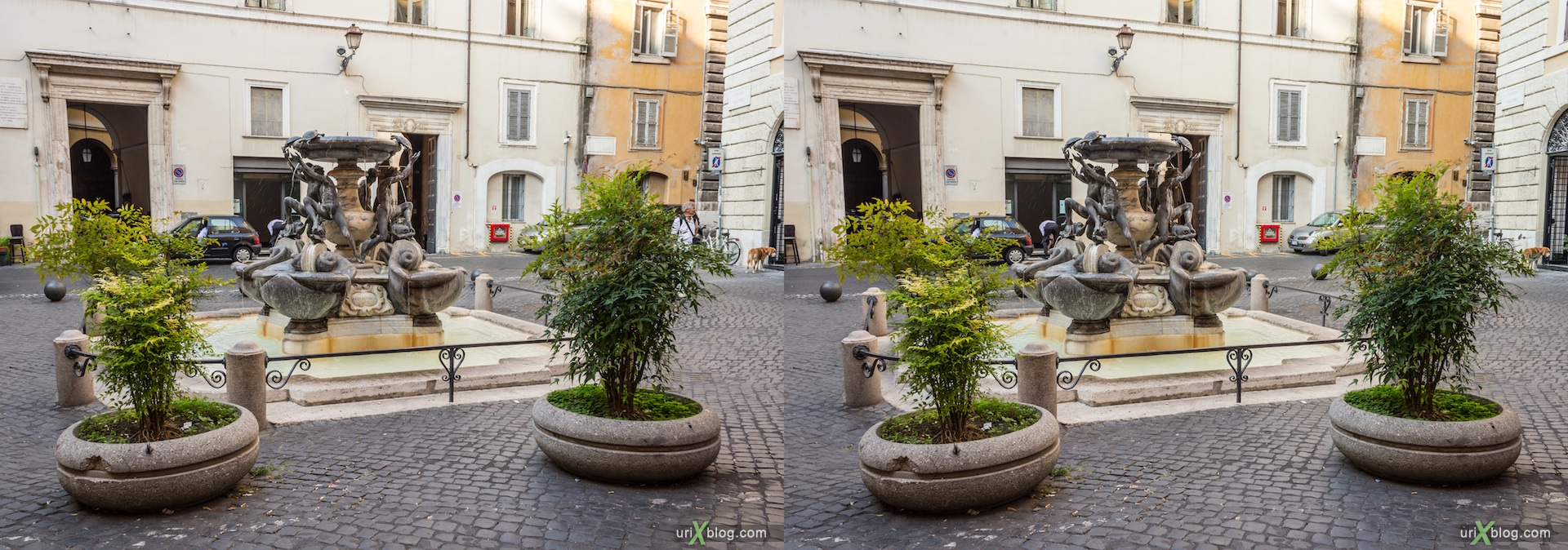 2012, Turtle fountain, Rome, Italy, 3D, stereo pair, cross-eyed, crossview, cross view stereo pair