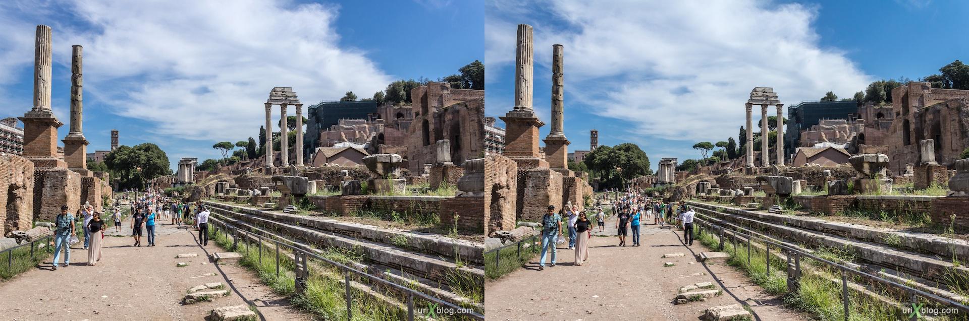 2012, Римский форум, Палатинский холм, город, раскопки, древний Рим, Италия, 3D, перекрёстные стереопары, стерео, стереопара, стереопары