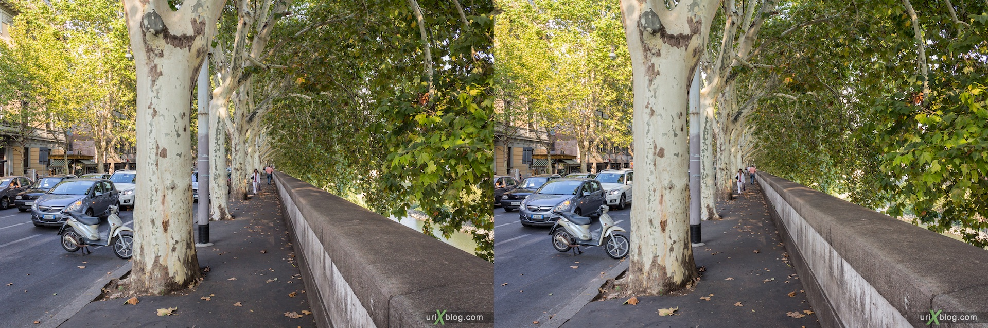 2012, Lungotevere de Cenci street, embankment, trees, 3D, stereo pair, cross-eyed, crossview, cross view stereo pair