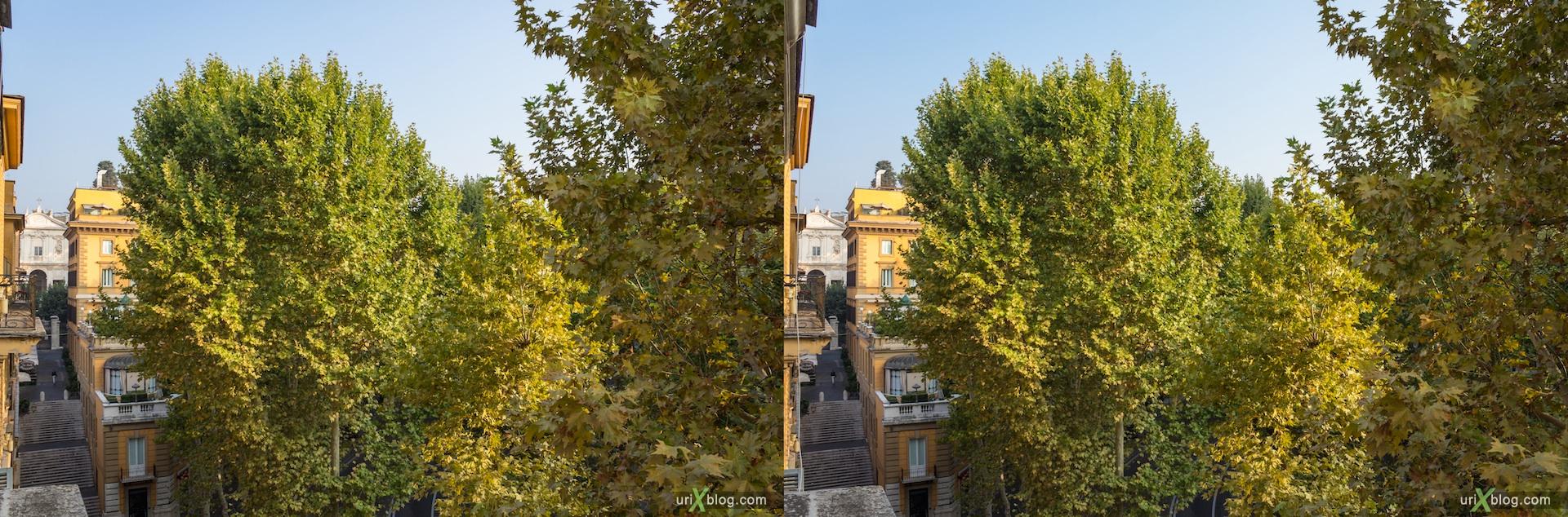 2012, вид из окна, отель, улица Vittorio Veneto, Рим, Италия, осень, 3D, перекрёстные стереопары, стерео, стереопара, стереопары