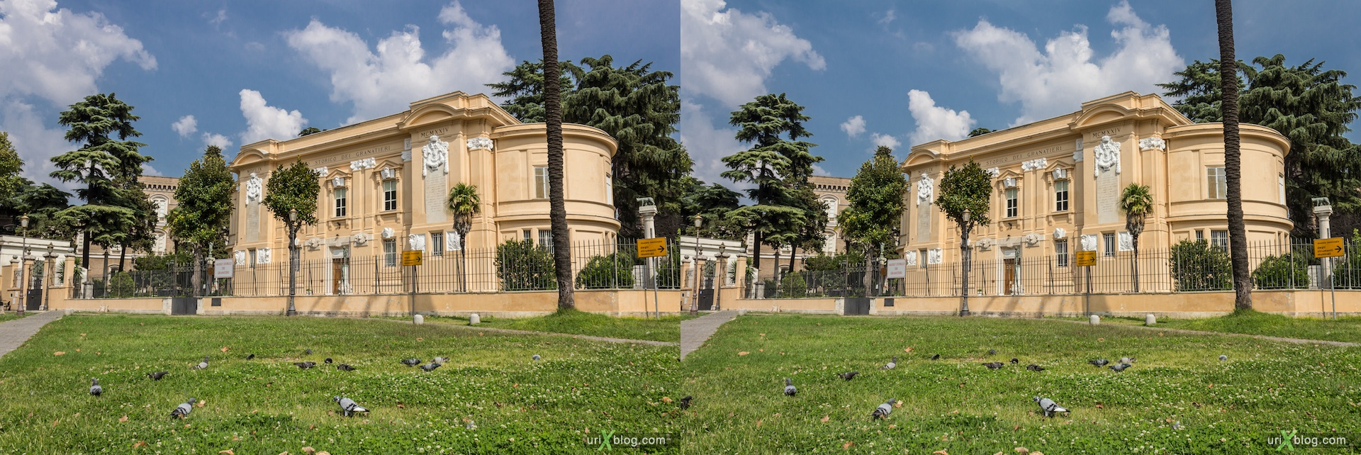 2012, lawn, grass, pigeons, Santa Croce in Gerusalemme square, 3D, stereo pair, cross-eyed, crossview, cross view stereo pair