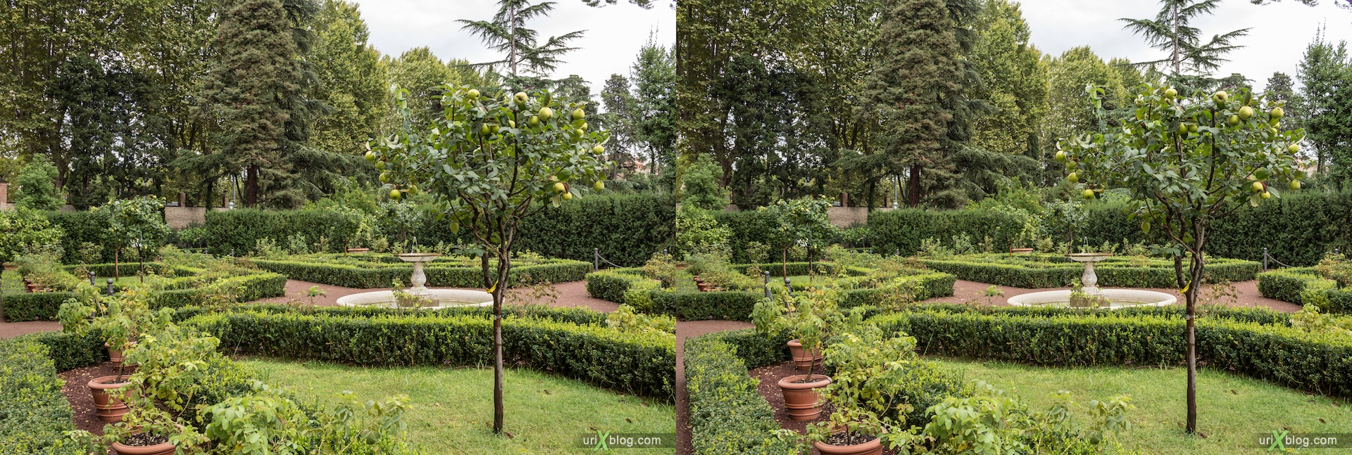 2012, Villa Farnesina, fountain, lemons, Rome, Italy, Europe, 3D, stereo pair, cross-eyed, crossview, cross view stereo pair