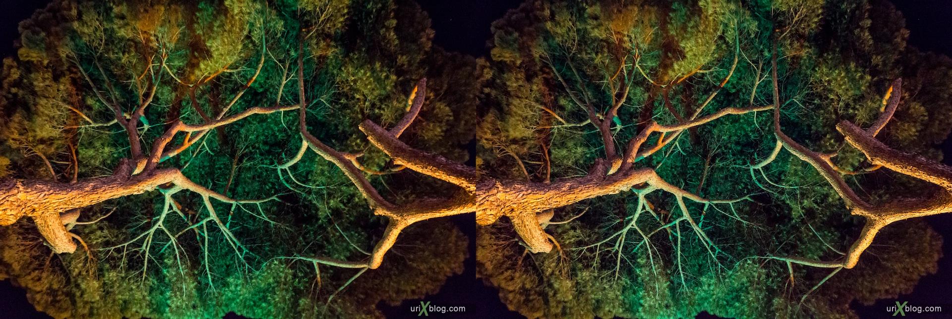 2012, Vittoriano, trees, night, Via di San Pietro in Carcere street, Rome, Italy, Europe, 3D, stereo pair, cross-eyed, crossview, cross view stereo pair
