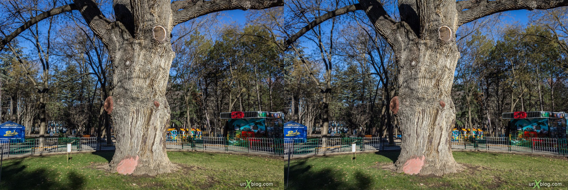 2012, Simferopol, Childrens park, Crimea, Russia, Ukraine, winter, 3D, stereo pair, cross-eyed, crossview, cross view stereo pair, stereoscopic
