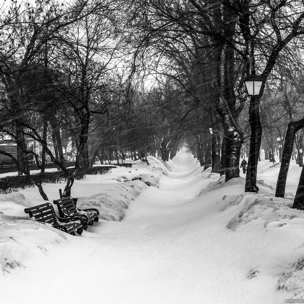 2013, Moscow, Weather, Russia, Tverskoy boulevard, Pushkin square, winter, spring, snow, cold, black and white, B/W