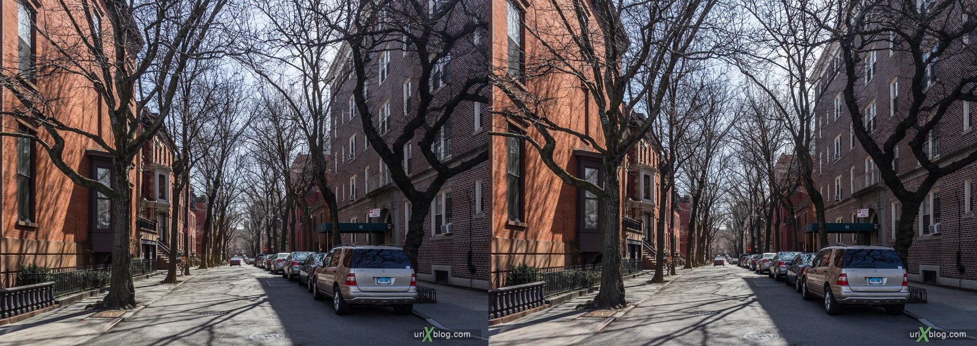 2013, Cranberry street, Brooklyn, NYC, New York City, USA, 3D, stereo pair, cross-eyed, crossview, cross view stereo pair, stereoscopic