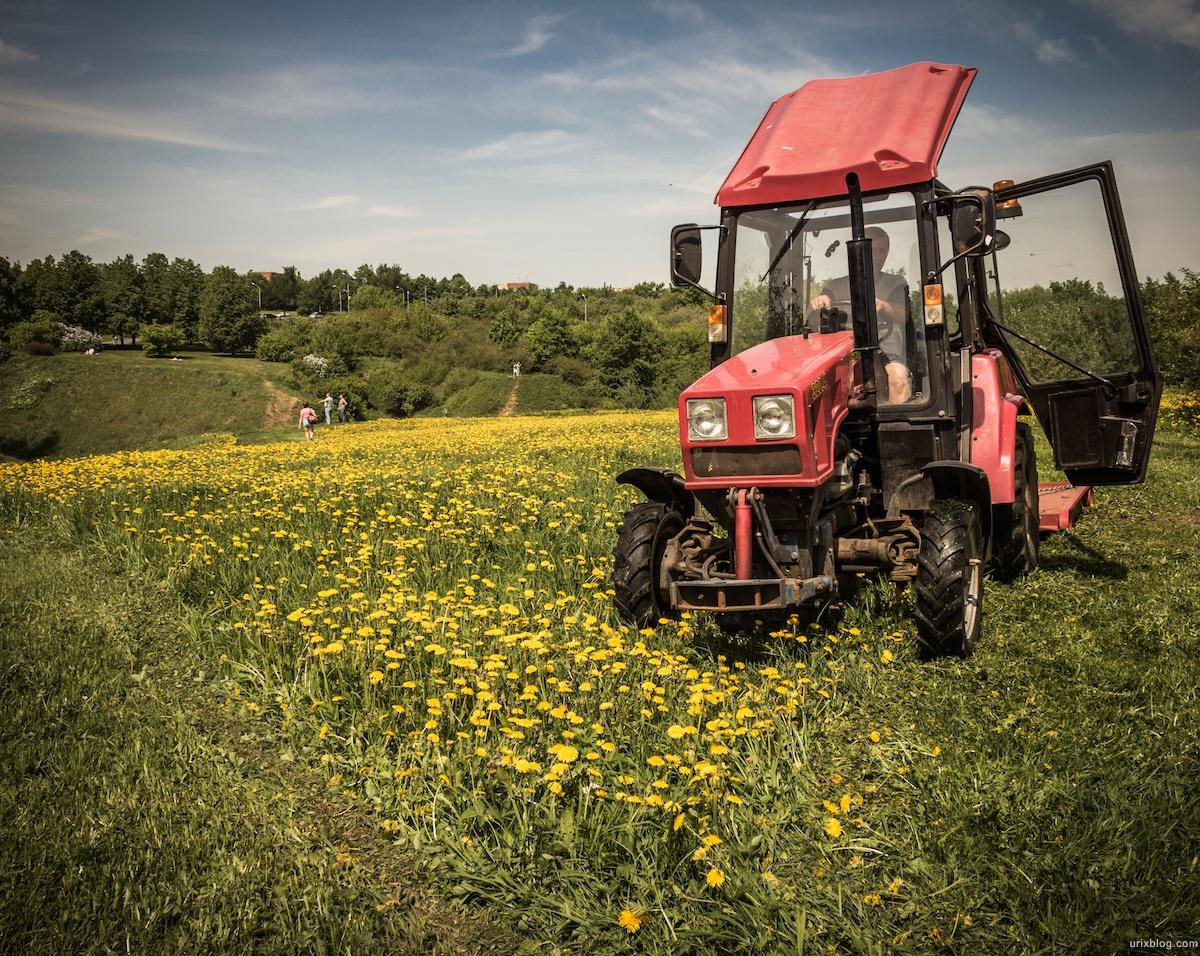 2013, Kolomenskoje, park, dandelions, field, tractor, mower, grass, flowers, spring, Moscow, Russia