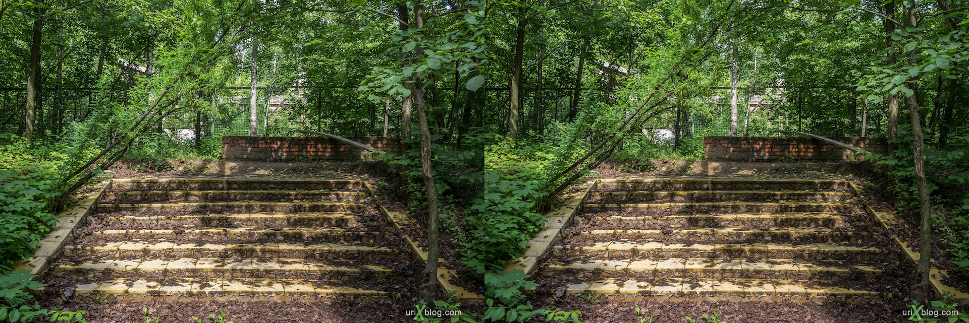 2013, old, abandoned, cafe, forrest, grass, bush, steps, fence, Sokolniki, Moscow, Russia, 3D, stereo pair, cross-eyed, crossview, cross view stereo pair, stereoscopic