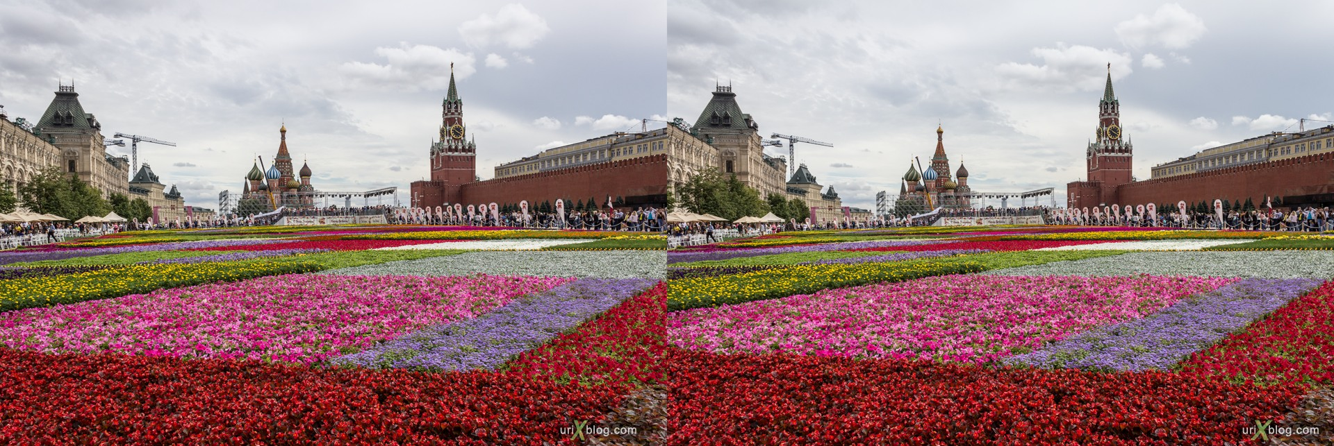 2013, Red Square, Moscow, Russia, Flowers, 3D, stereo pair, cross-eyed, crossview, cross view stereo pair, stereoscopic