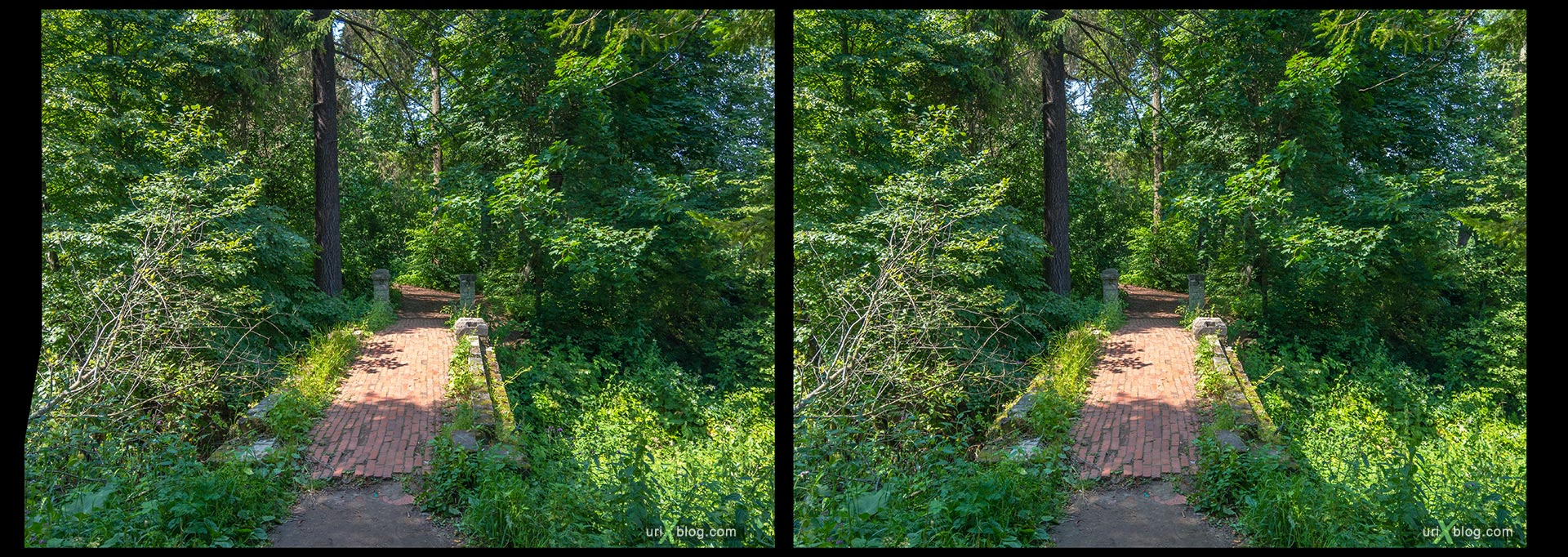 bridge, Serednikovo homestead, Barsky pond, lake, Russia, 3D, stereo pair, cross-eyed, crossview, cross view stereo pair, stereoscopic