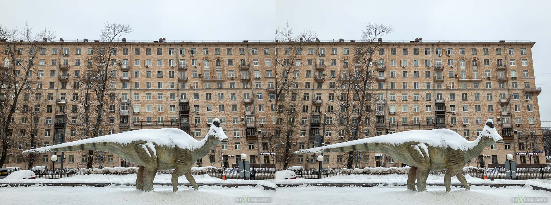 Darwin museum, dinosaur, Amurosaurus, hadrosaur, winter, snow, Moscow, Russia, 3D, stereo pair, cross-eyed, crossview, cross view stereo pair, stereoscopic