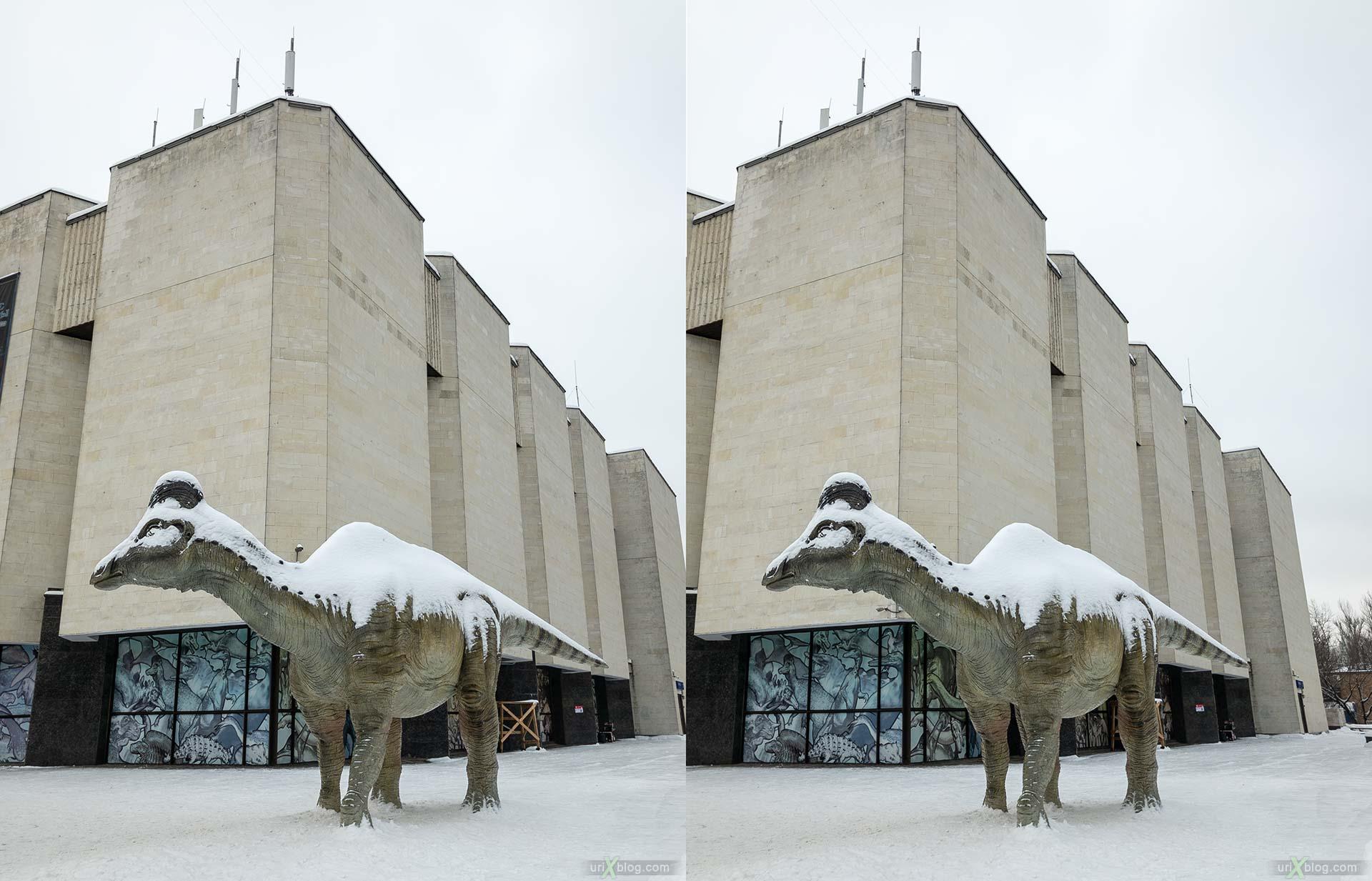 Дарвиновский музей, динозавр, Амурозавр, гадрозавр, зима, снег, Москва, Россия, 3D, перекрёстная стереопара, стерео, стереопара