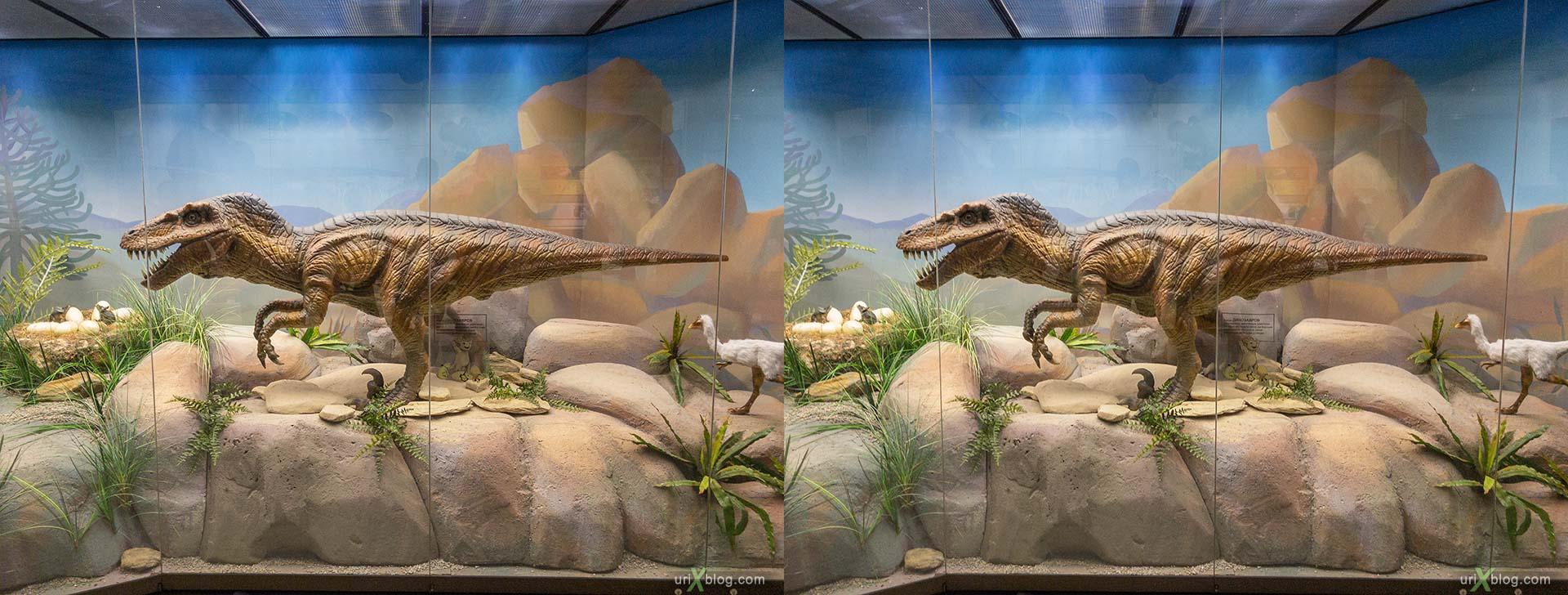 Дарвиновский музей, динозавр, зима, снег, Москва, Россия, 3D, перекрёстная стереопара, стерео, стереопара