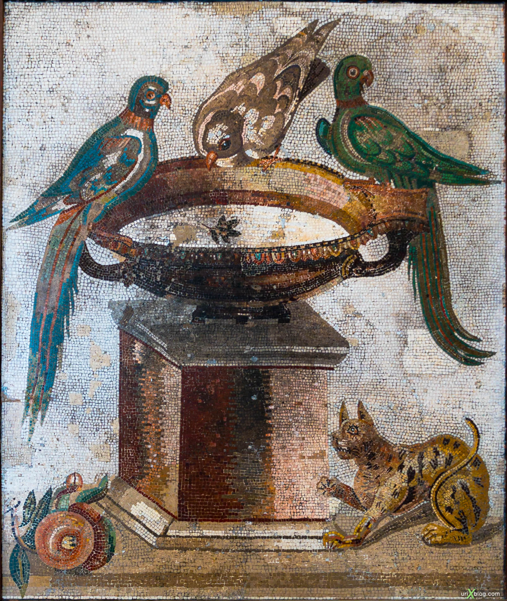 frescoes, mosaic, National Archaeological Museum of Naples, ancient Rome, Pompei, exhibition, Naples, Italy