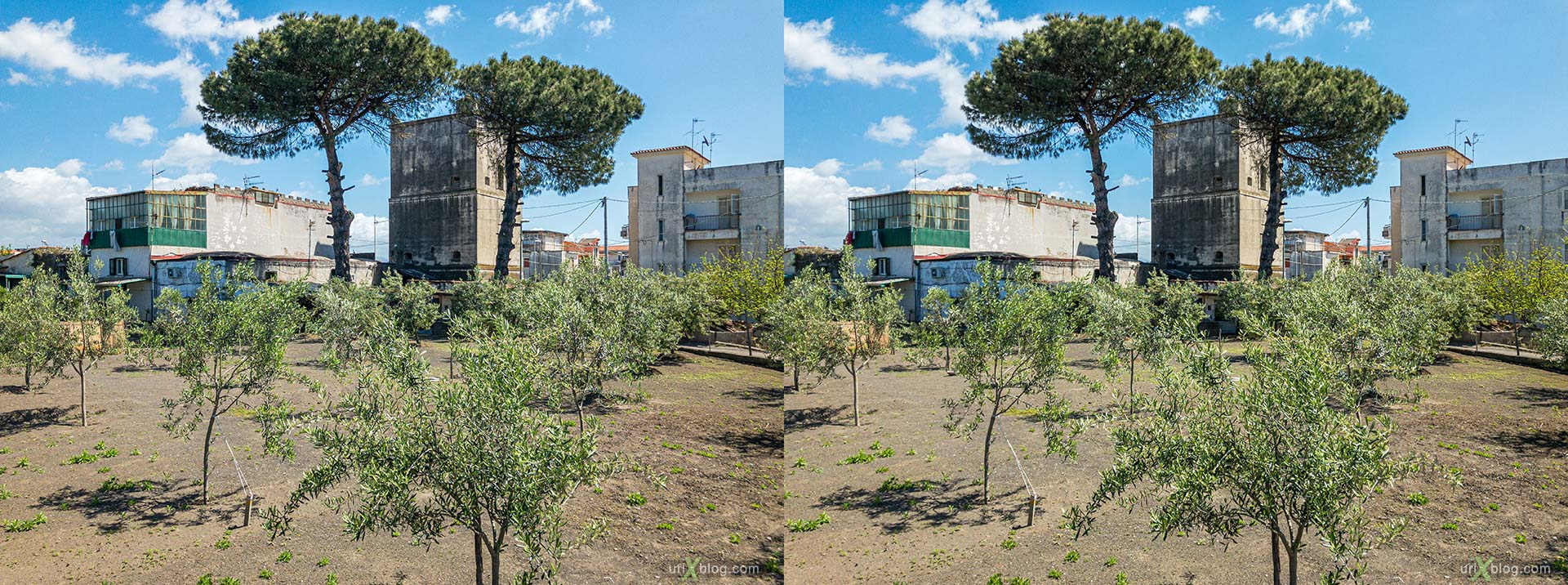 garden, Torre Annunziata, Italy, 3D, stereo pair, cross-eyed, crossview, cross view stereo pair, stereoscopic