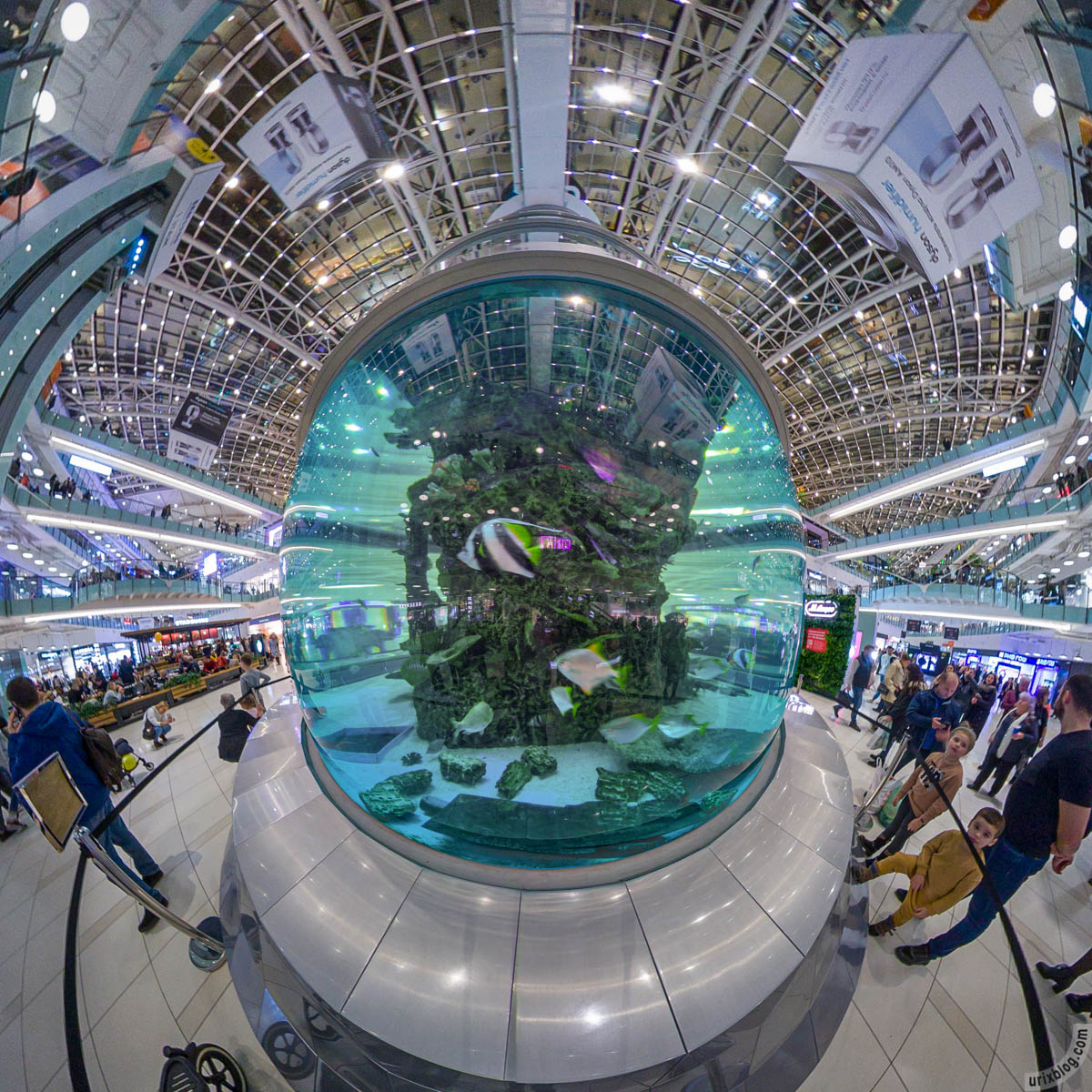 Аквариум, Авиапарк, Москва, Россия, фишай, панорама, Insta360 One X, 2019