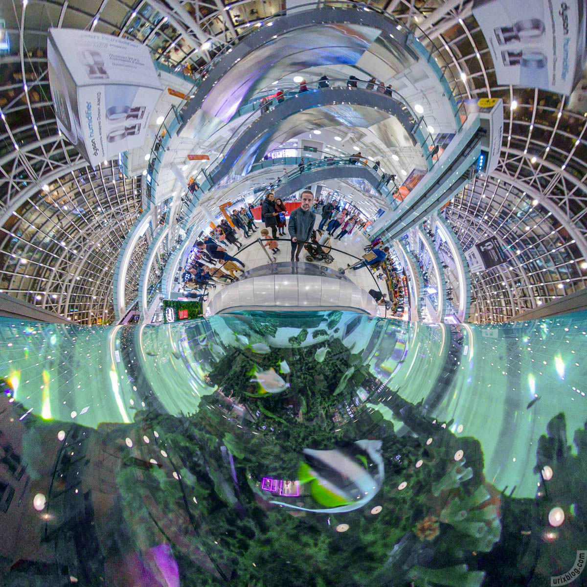 Aquarium, Aviapark, aquarium, Moscow, Russia, fisheye, panorama, Insta360 One X, 2019
