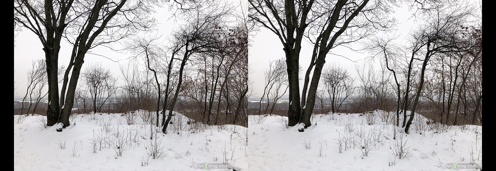 Kolomenskoye park, winter, snow, Russia, 3D, stereo pair, cross-eyed, crossview, cross view stereo pair, stereoscopic