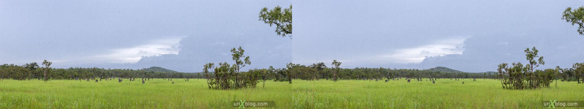 термитники, Litchfield National Park, Северная территория, Австралия, 3D, перекрёстная стереопара, стерео, стереопара, 2011