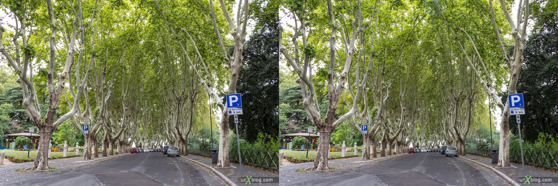 2012, Passeggiata del Gianicolo street, trees, Rome, Italy, Europe, 3D, stereo pair, cross-eyed, crossview, cross view stereo pair