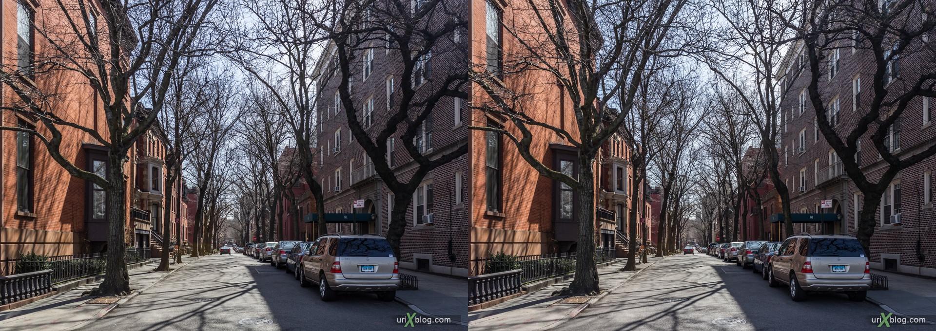 2013, Cranberry улица, Бруклин, Нью-Йорк, США, 3D, перекрёстные стереопары, стерео, стереопара, стереопары