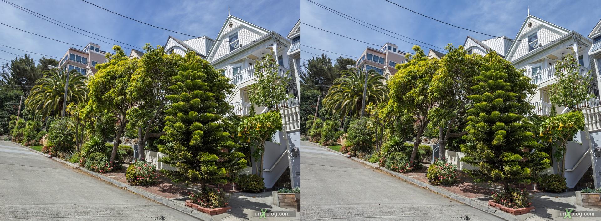 2013, Castro, Dolores Heights, Сан-Франциско, США, 3D, перекрёстные стереопары, стерео, стереопара, стереопары