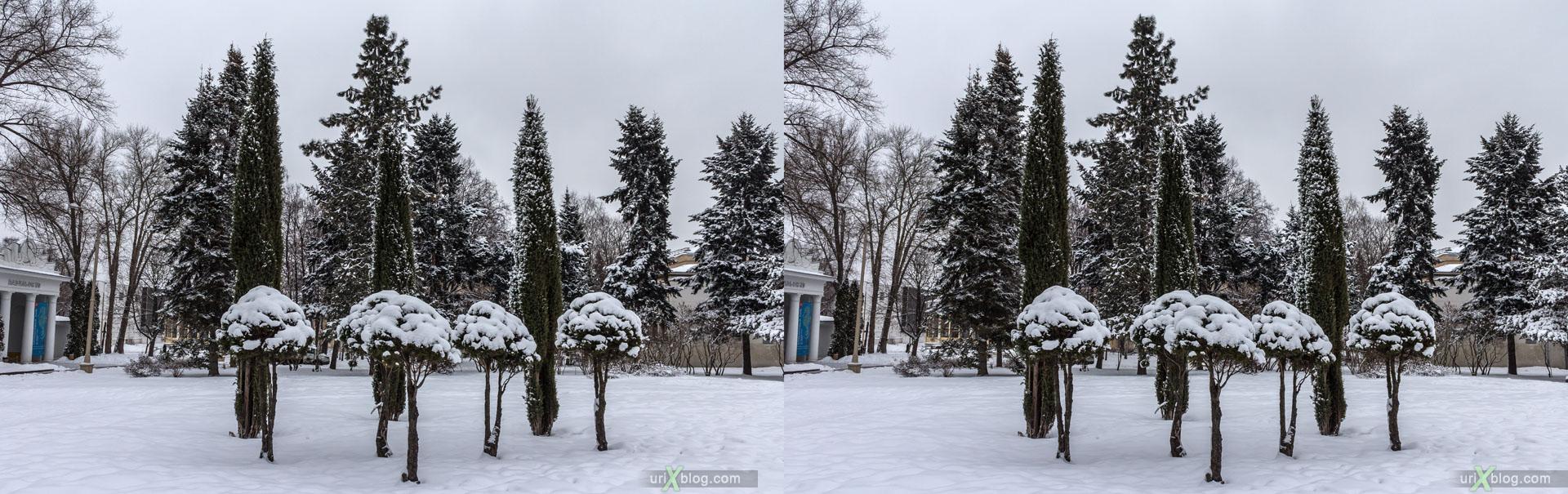 ВДНХ, ВВЦ, парк, зима, снег, Москва, Россия, 3D, перекрёстная стереопара, стерео, стереопара, 2015